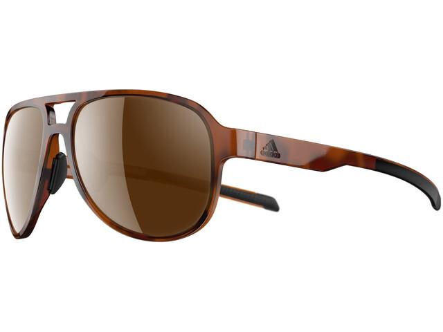 adidas Pacyr Lunettes, brown havanna/brown